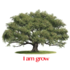 I am grow